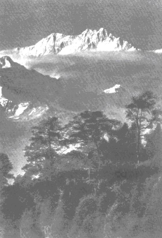 Вид на Канченджангу из Дарджилинга