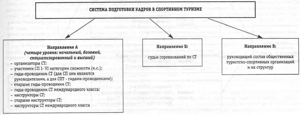 Рис.1. Система подготовки кадров в СТ
