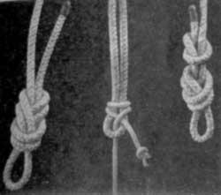 Альпинистские узлы (слева направо): «восьмерка», брамшкотовый, узел проводника